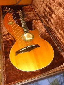 harp guitar in case